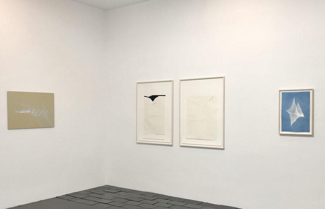 Artnews 3: MIRIAM SALAMANDER + FABIAN GATERMANN   25.2. – 13.3.2021